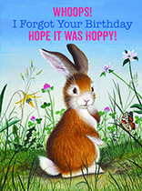 Contrite Bunny (Birthday Greeting Cards)